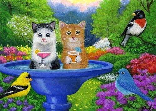 kittens in waterbak…